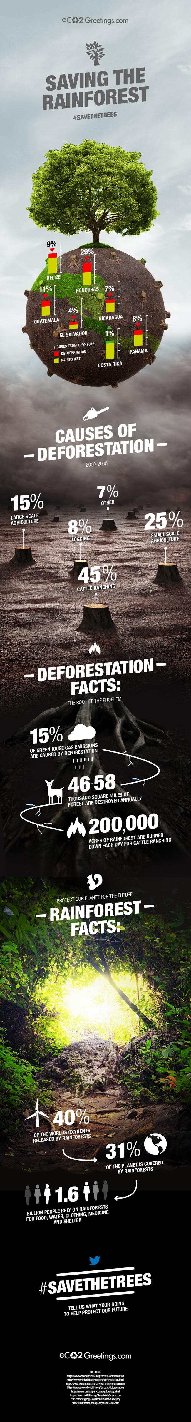 eco2-infographic-deforestation