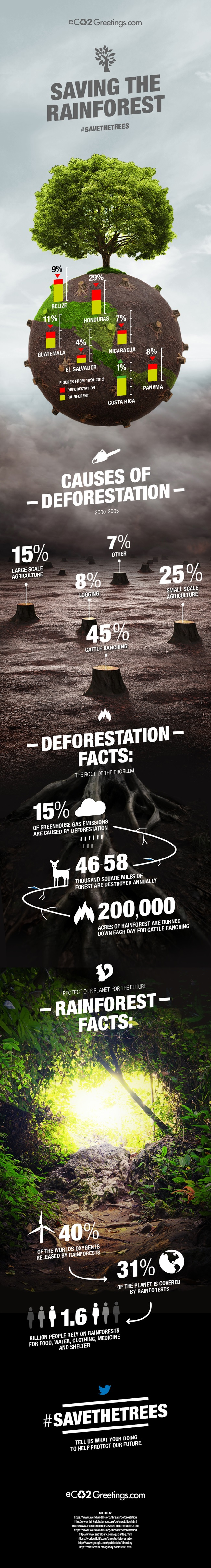 eco2-infographic-deforestation